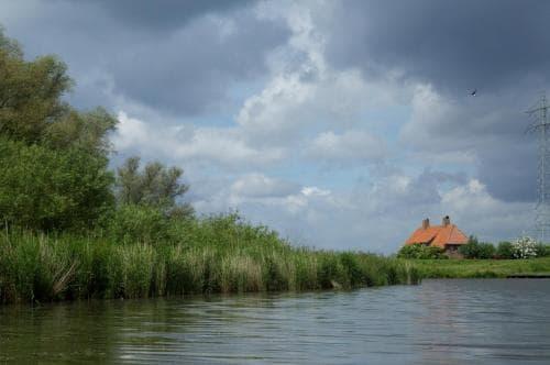 natuur de biesbosch 2 Hotel Heere Raamsdonksveer